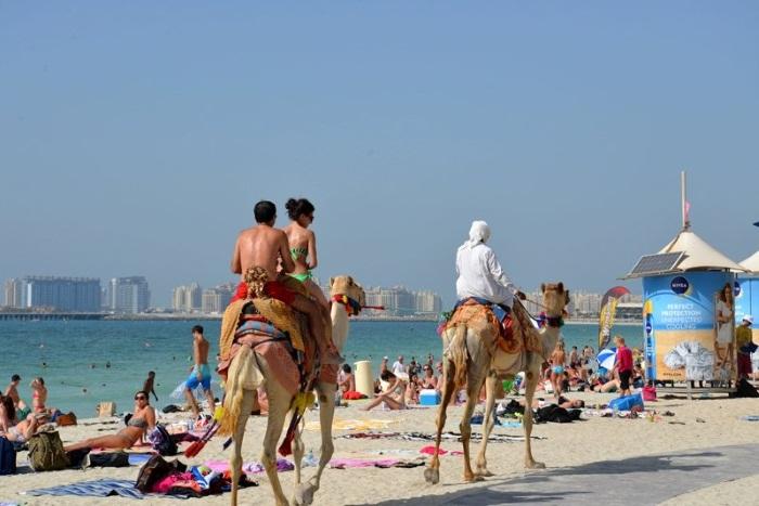 Дубай отдых цены 2018 отзывы купить апартаменты сардиния