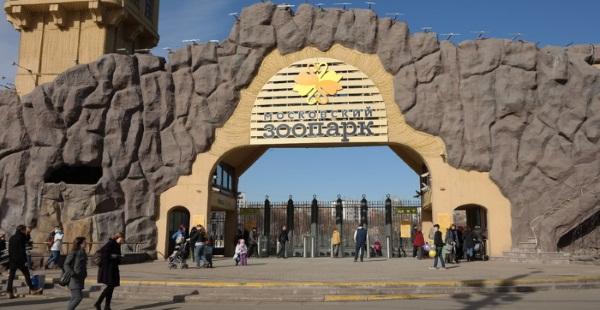 Куда сходить в Москве сегодня бесплатно погулять с ребенком, интересные места, что посмотреть туристу