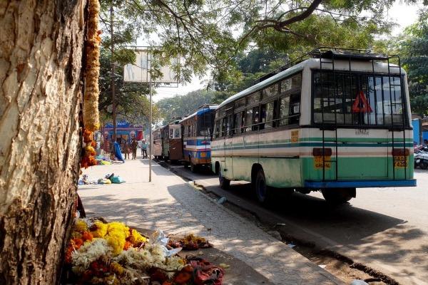 Гоа Южный или Северный. Что лучше выбрать для отдыха в Индии, разница. Советы туристов