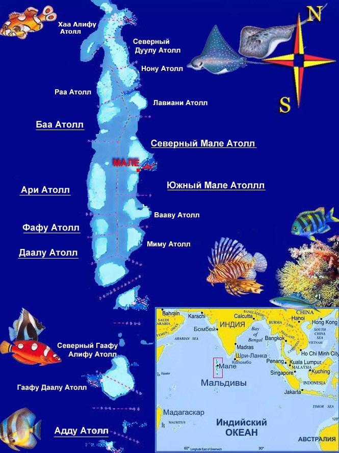 Индийский океан. Максимальная, средняя глубина, площадь, где находится на карте, моря, острова, соленость, ресурсы, течения. Интересные факты, фото
