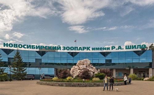 Куда сходить с ребенком в Новосибирске. Бесплатные, интересные экскурсии для детей