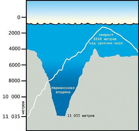 Марианская впадина на карте мира. Координаты, глубина, как образовалась, обитатели. Интересные факты, тайны