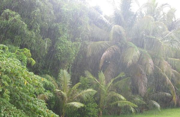 Сезон дождей во Вьетнаме по месяцам. Таблица, когда начинается в городах. Климат и погода