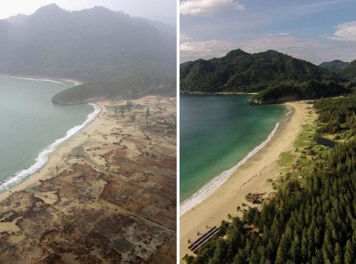 Землетрясение в Таиланде, цунами. Статистика, прогноз. Описание событий 2004, 2010, 2011, 2016, 2017 годов
