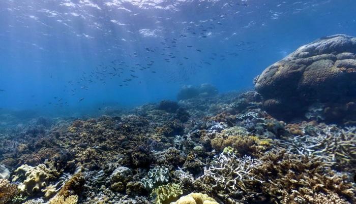 Андаманское море. Где находится, какие страны омывает, фото, описание, курорты