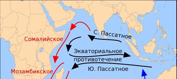 Аравийское море на карте мира. К какому океану относится, глубина, соленость, описание