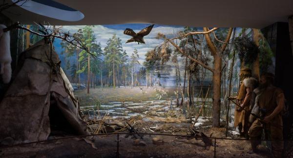 Беловежская пуща. Где находится на карте, заповедник, национальный парк, фото и история