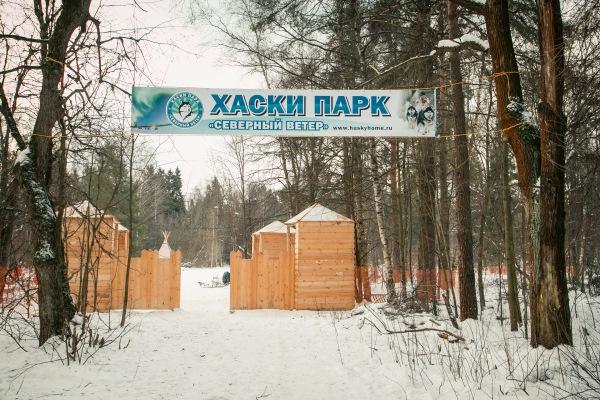 Катание на собачьих упряжках в Москве, Подмосковье. Адреса, цены