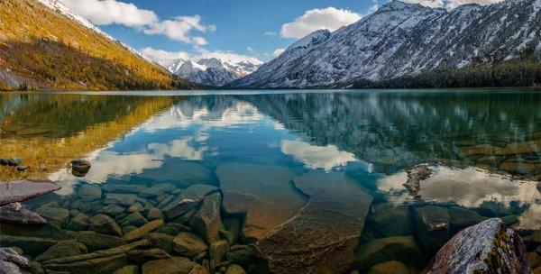 Алтайский заповедник Алтайского края Где находится биосферный национальный парк фото природа животные описание