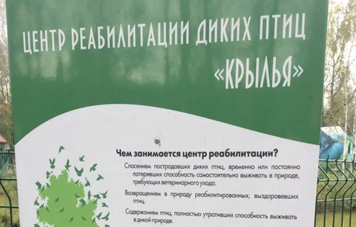 Кузнецкий Алатау на карте России. Где находится хребет, горы, описание