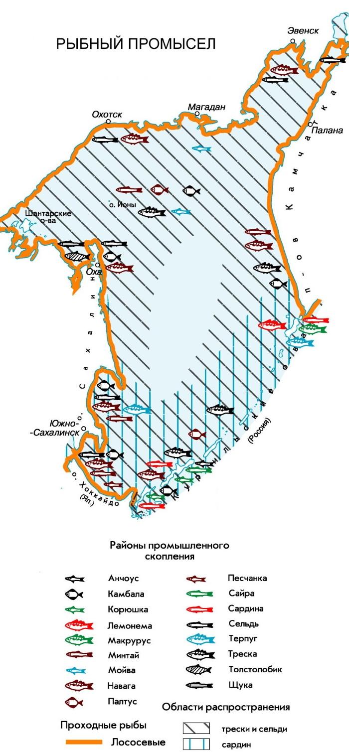 Охотское море на карте России. Соленость, ресурсы, площадь, глубина, характеристика