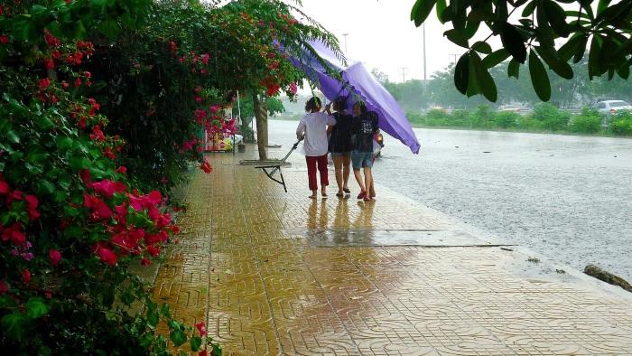 Остров Самуи в Таиланде. Фото, пляжи, достопримечательности, карта, отели, отдых