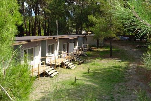 Отдых в Абхазии: частный сектор, санатории и пансионаты. Курорты, куда поехать, цены 2019