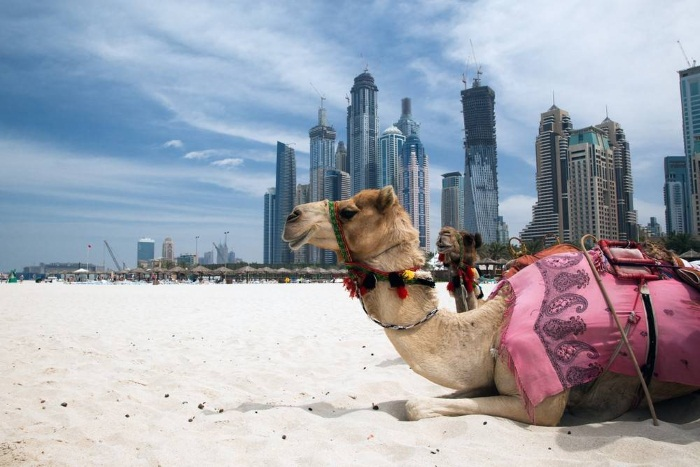 Погода в Эмиратах. Температура воды и воздуха по месяцам
