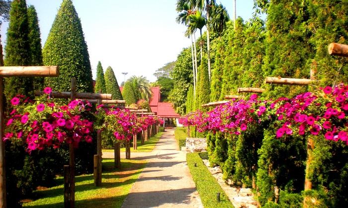Тропический парк Нонг Нуч Паттайя. Где находится на карте Таиланда, цена билета