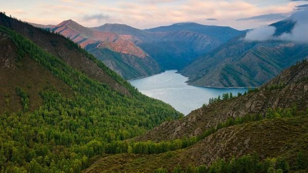 Алтайский заповедник. Где находится биосферный национальный парк, природа, животные, описание