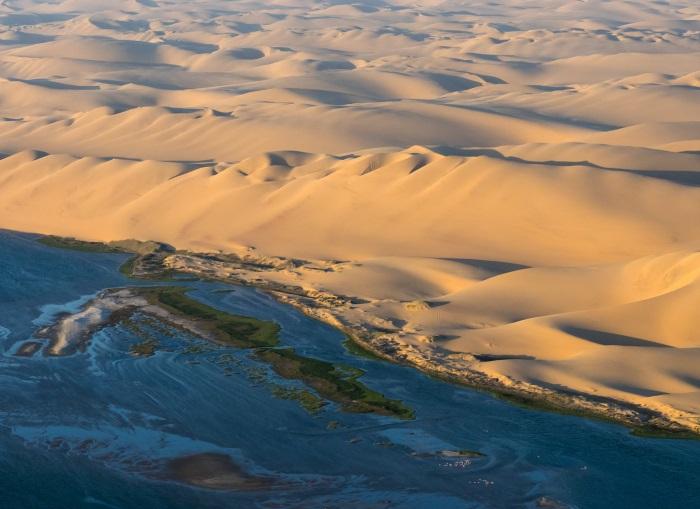 Берег скелетов Намибия. Фото, где находится национальный парк, чем примечателен