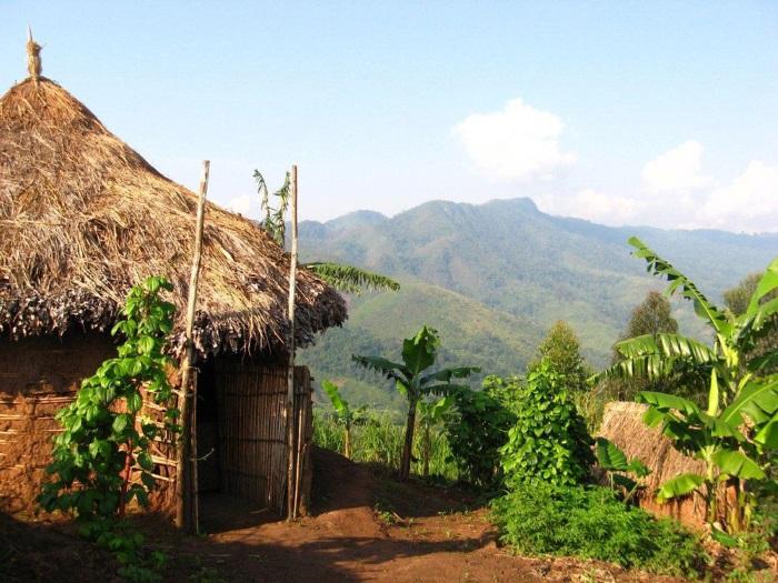 Демократическая республика Конго. Границы, столица, достопримечательности, фото и описание