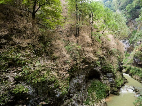 Гуамское ущелье. Фото, где находится, как добраться. Термальные источники, гостиницы, базы отдыха