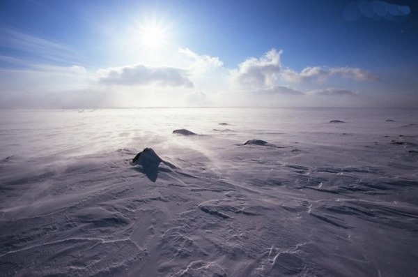 Самые большие пустыни в мире по площади. Названия, где находятся, фото и характеристики