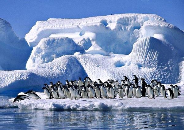 Самый большой полуостров в мире. Список Топ-10, названия и описание, границы