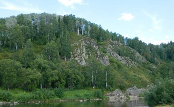 Шорский национальный парк в Кемеровской области. Фото, где находится, животные, растительный мир