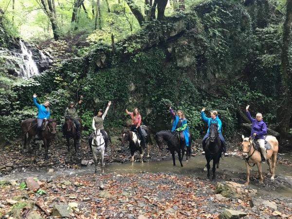 Сочинский национальный парк. Животные, растительный мир, фото и описание