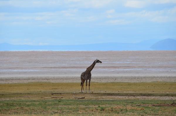 Танзания. Где находится на карте мира, достопримечательности, фото и описание, туры, отзывы туристов