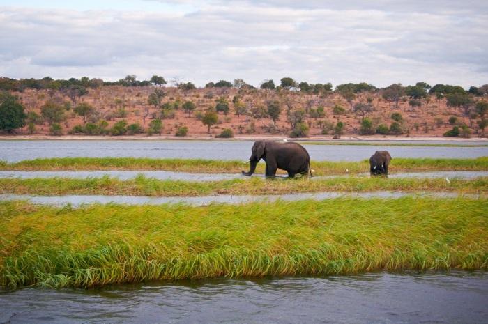 Ботсвана. Фото, достопримечательности, где находится на карте мира, столица, фото и описание