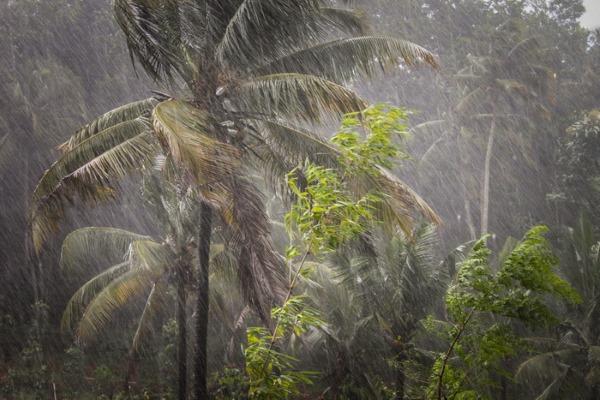 Остров Фукуок во Вьетнаме. Сезон для отдыха по месяцам, когда лучше ехать