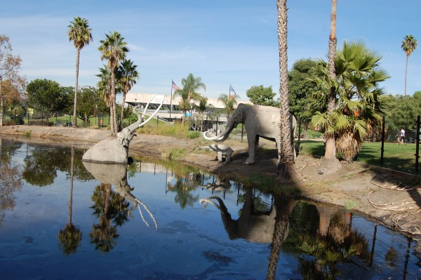 Лос-Анджелес. Достопримечательности, фото, описание, Диснейленд, что посмотреть за 1-3 дня