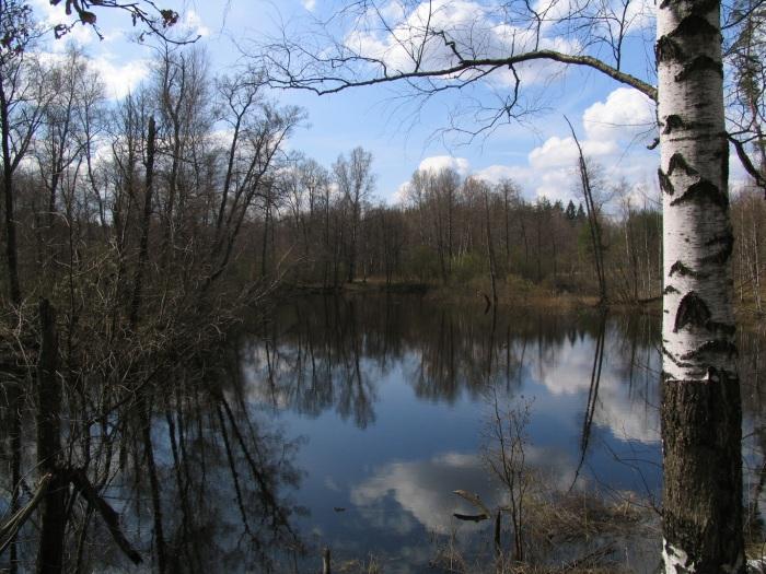 Национальный парк Мещера в Гусь-Хрустальном. Фото, адрес, чем уникален