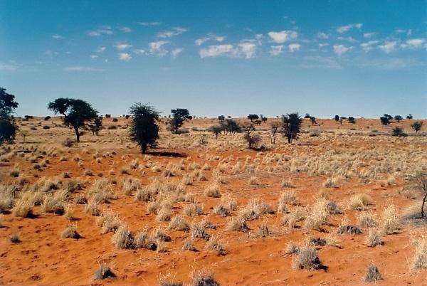 Самые маленькие пустыни на Земле. Как называются, где находятся, факты, фото