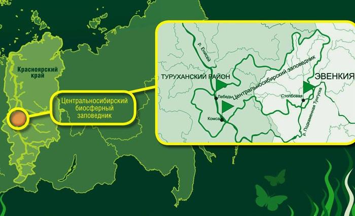Самые большие заповедники в России по площади. Местонахождение, растительный и животный мир