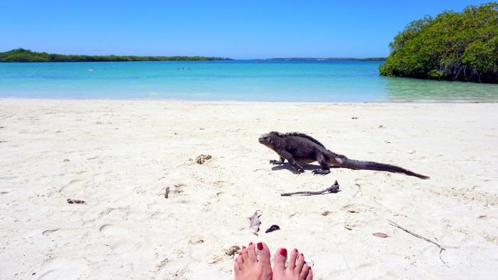 Самые красивые пляжи в мире. Фото, названия, острова Греции, Сейшелы, Таиланд