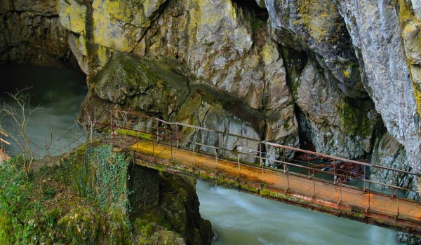 Словения. Отдых на море, курорты Пиран, Марибор, Любляна, Птуй, Блед и другие города