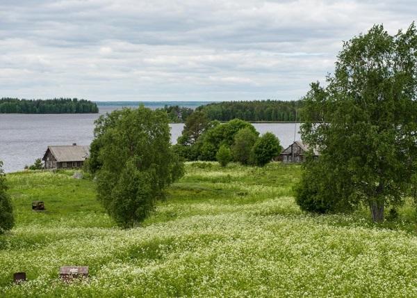 Водлозерский национальный парк. Фото, карта, адрес, животные, растительный мир, природа