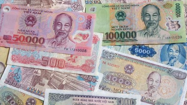 Что нельзя вывозить из Вьетнама в Россию. Официальный список 2020