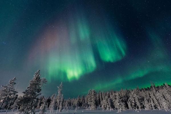 Эмиграция в Финляндию из России. Список профессий 2019, советы, отзывы переехавших
