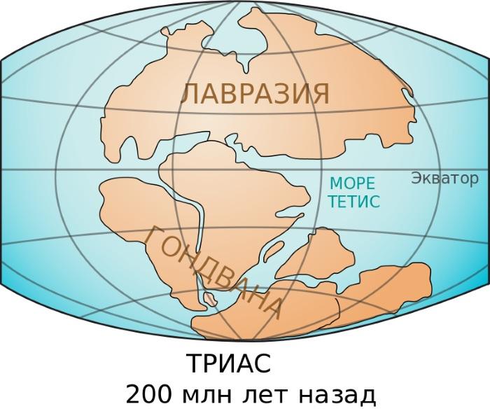Сколько континентов на Земле. Названия, какой самый сухой, большой, маленький, кто открыл, размеры и характеристики