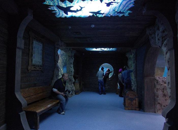 Океанариум «Рио» на Дмитровке, Москва. Цена, часы работы, как добраться, фото и видео