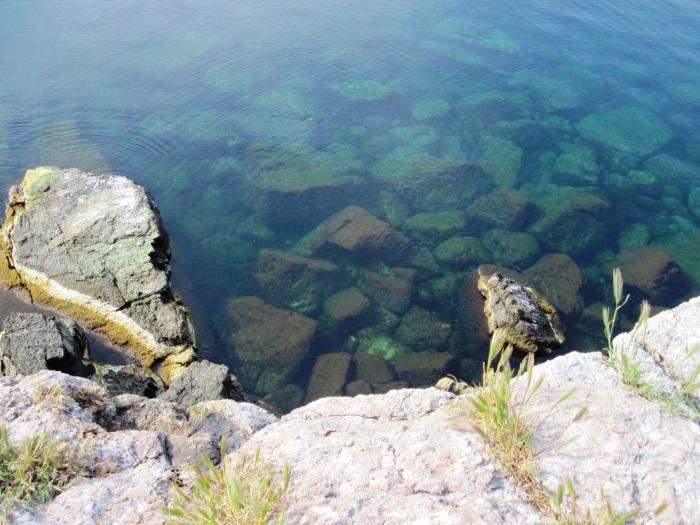 Остров Змеиный в Черном море. Кому принадлежит, история, интересные факты