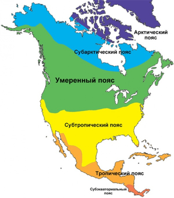 Северная Америка. Достопримечательности, фото природы, география, животные, растительность континента