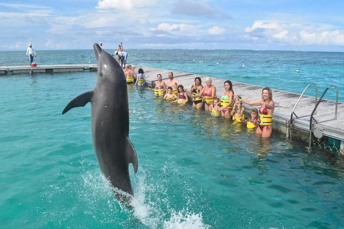 Caribe Club Princess Beach Resort & SPA 4* Доминикана. Отзывы, фото, цены