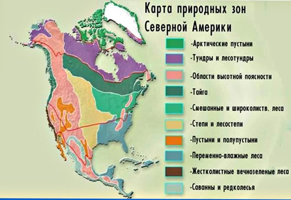 Части света. Названия и материки. Описание, географическое положение