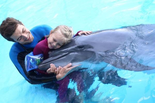 Самые интересные факты о дельфинах: умные, крупные, добрые. Презентация для детей