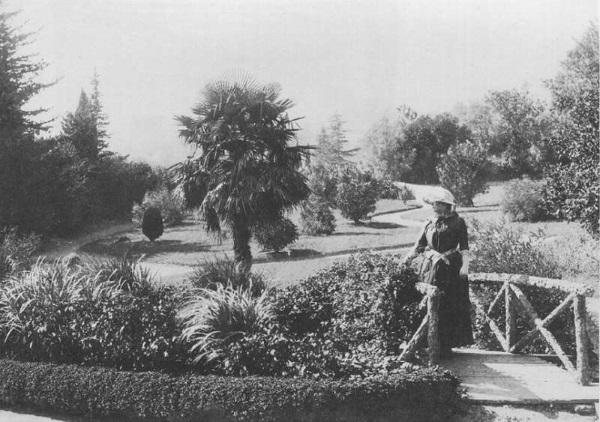 Никитинский ботанический сад Ялта, Крым. Фото, выставки, адрес, режим работы