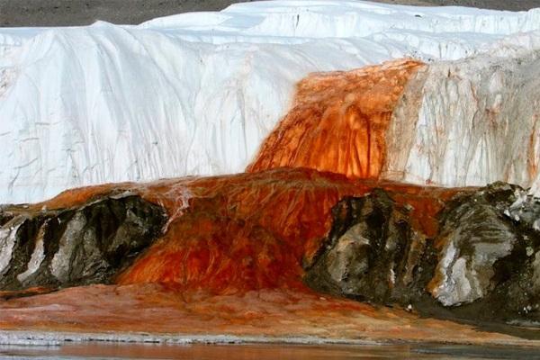 Материк Антарктида. Первооткрыватели, интересные факты, фото, достопримечательности, география