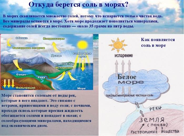 Самые соленые моря в России и мире Топ-10. Фото, где находятся, описание
