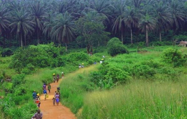 Сьерра-Леоне. Где находится на карте Африки. Столица государства, достопримечательности, фото, отдых
